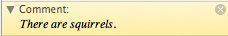 Screen shot of Scrivener comment bar that reads: There are squirrels.