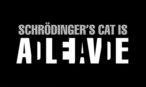 Black rectangle with white text reading: Schrödinger's cat is ALIVE with the word 'DEAD' spelled out in the black spaces between the letters of 'ALIVE'